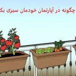 در آپارتمان خودمان سبزی بکاریم